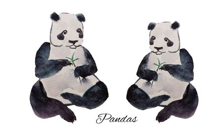Watercolor hand drawn panda with a bamboo stick on white background. Stock Photo