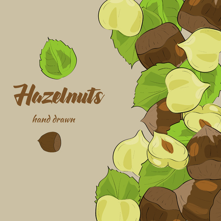 palm oil: Hand drawn hazelnuts with palm leaves. Package design. Illustration