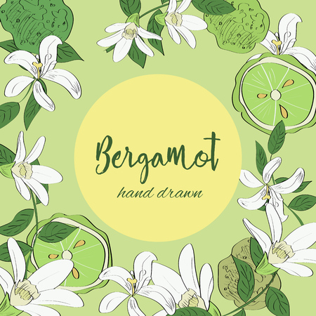Hand drawn floral wreath of bergamot flowers.