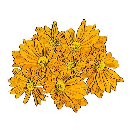 手には、黄色い菊の花の組成が描画されます。スタイルをスケッチします。