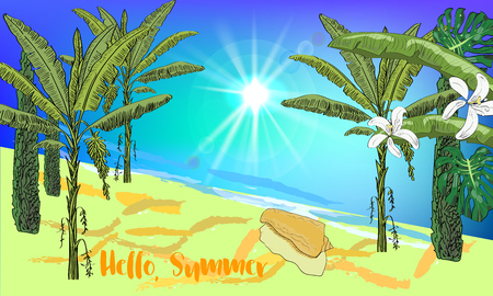 cypress: Hand drawn sea scape background with tropical palms, cypress, leaves, flowers, seashell and sun. Hello, summer. Illustration