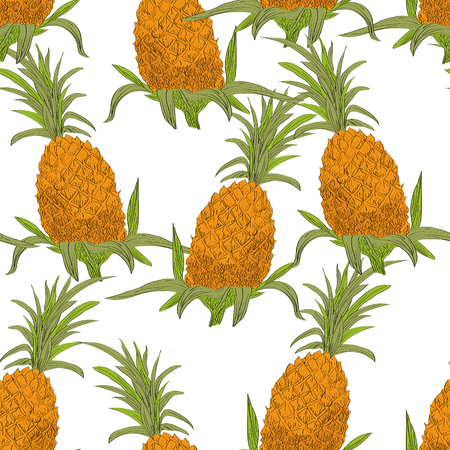 springtime: Vector drawn tropical seamless pattern on white background with pineapples in a sketch style. Exotic collection. Illustration