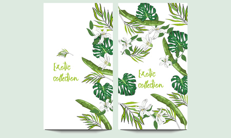 Vertical vector banners of hand drawn tropical palm leaves and flowers. Exotic collection. An idea for design, invitation, save the date card.