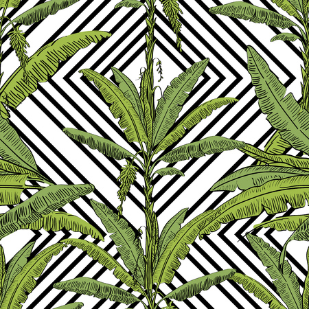 Vector drawn banana palm tree seamless pattern with leaves on white background in a sketch style. Exotic collection.