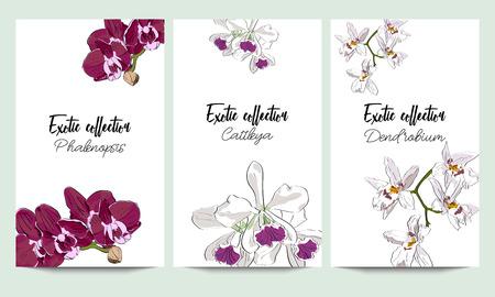 蘭のエキゾチックなコレクションの垂直ベクトル バナー。招待状のデザインのためのアイデア。