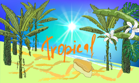 Vector drawn seascape background with tropical palms, cypress, leaves, flowers, seashell and sun. Illustration