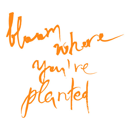 Bloom where you are planted Ink illustration. Modern brush calligraphy. Isolated on white background.