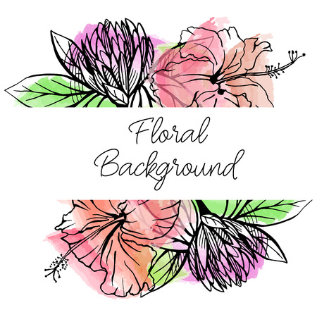 clovers: Vector drawn floral border with hand drawn flowers on watercolor background. Hibiscus and clover