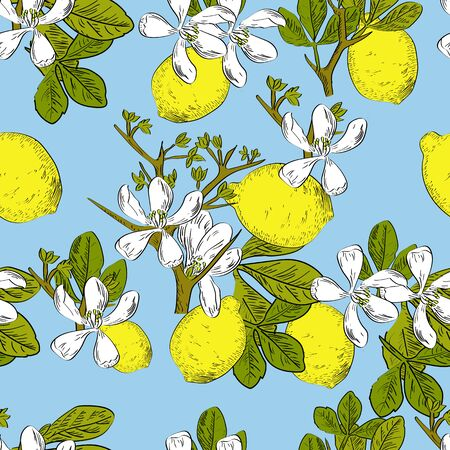 Vector drawn citrus seamless pattern on blue background with lemons and flowers in a sketch style. Exotic collection.