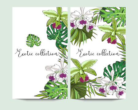 Vector vertical exotic collection banners with hand drawn tropical leaves and flowers on white background. Design for packaging, tea shop, drink menu, homeopathy and health care products. Illusztráció