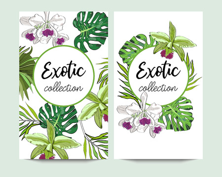 Vector vertical exotic collection banners with hand drawn tropical leaves and flowers on white background. Design for packaging, tea shop, drink menu, homeopathy and health care products. Vettoriali
