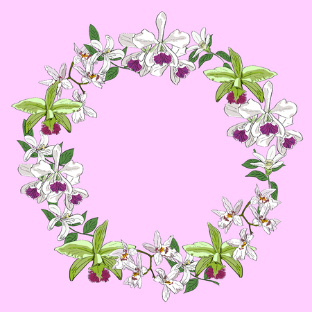 Vector hand drawn orchids floral wreath isolated on pink background