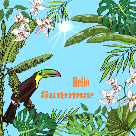 Hello summer tropical vector design for banner or flyer with banana palms, orchids, sun and toucan.