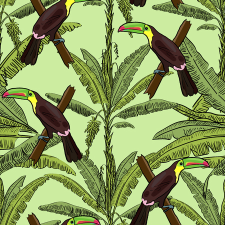 Tropical hand drawn exotic collection seamless pattern with banana palms and toucans. Package, wallpaper, textile, cover, design.