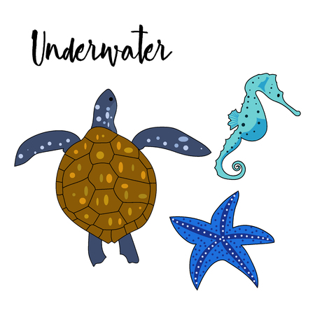 Vector drawn set of doodle underwater animals. Turtle, sea horse, sea star on white background.