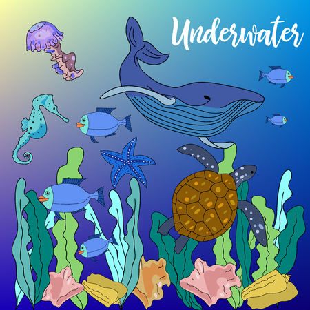 Vector drawn background with hand drawn underwater animals and plants. Turtle, sea horse, sea star, fish, sea shell, jellyfish in sketch style.