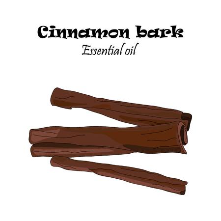 Vector drawn cinnamon bark. Essential oil design. Package design idea. Иллюстрация