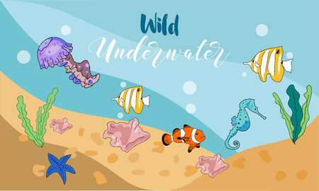 Vector drawn background with hand drawn underwater animals and plants. Sea horse, sea star, fish, sea shell, jellyfish in sketch style.