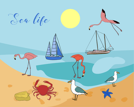 Vector drawn sea life background with hand drawn underwater animals and plants. Crab, flamingos, sea star, fish, sea shell, jellyfish in sketch style. Иллюстрация