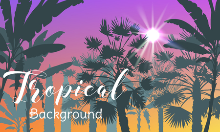 Summer tropical background with palms, sky and sunset. Summer placard poster flyer invitation card. Summertime. Иллюстрация