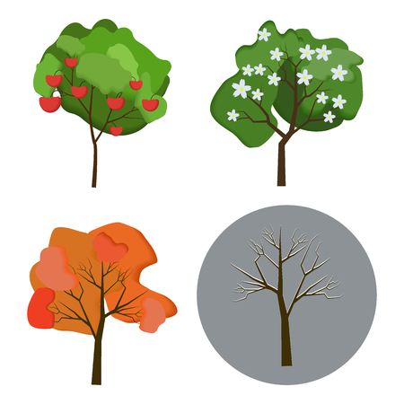 Vector set of autumn, winter, spring and summer trees on white background. Flat style.