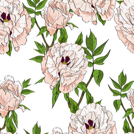 Floral seamless pattern with white peonies and leaves on white background. Hand drawn illustration.