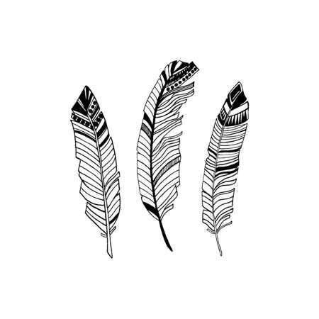 Realistic detailed feathers set, hand drawn vector illustration, black ink graphic isolated on white . Art decorative element for prints, cards, pattern, tattoo design.