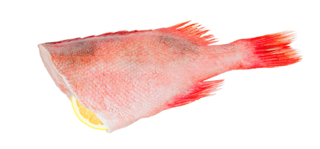 Raw red sea fish without head on white background. Red perch with lemon slice without shadow