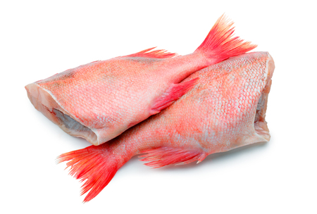 Raw red sea fish without head on white background. Two red perchs