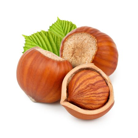 Hazelnuts with leaves isolated on white background as package design elements