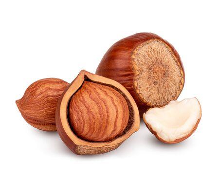Hazelnut isolated on white background Stock Photo