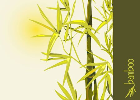 Vector isolated bamboo with leaves and branches on a background of the sun. Illustration in Chinese and Japanese style in traditional colors and unique font