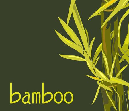 Vector isolated bamboo with leaves and branches on a green background. Illustration in Chinese and Japanese style in green colors and a unique font