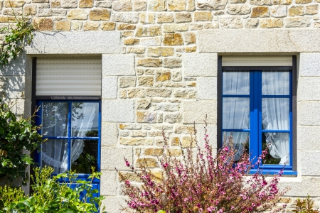 french style Window and Door with flower bush photo
