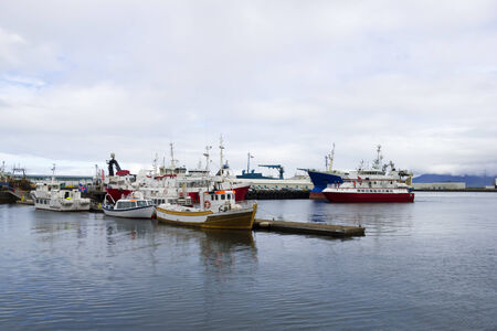 reykjavik: Puerto de Reykjavik