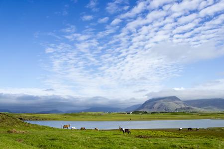 impassive: Beautiful lake against mountain Iceland, good summer weather