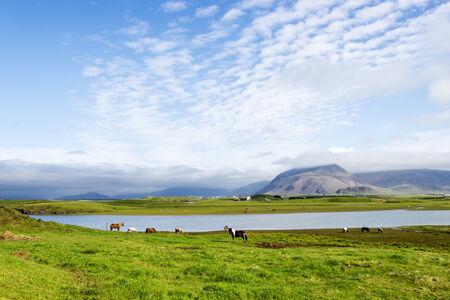 impassive: Beautiful lake against mountain background, Iceland, good summer weather