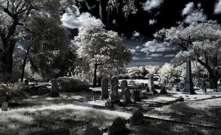 Magnolia Cemetery - Infrared 免版税图像
