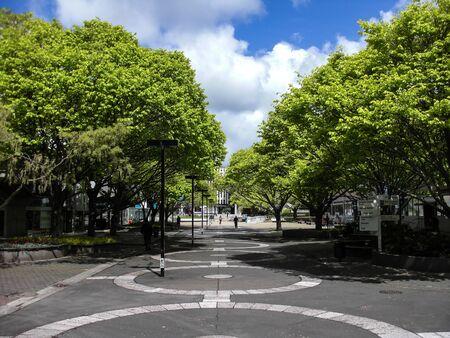 palmy: Massey University Courtyard Editorial