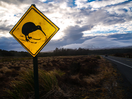 Kiwi Crossing photo