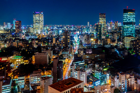Japan cityscape bird eye view at night