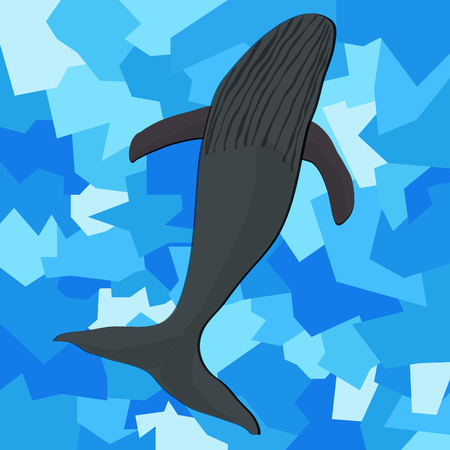gray whale: Gray whale on an abstract blue background Illustration