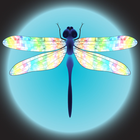 iridescent: Dragonfly with iridescent wings represented on the shining blue background. Illustration