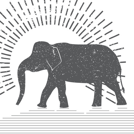 象は、タイポグラフィ図ベクトルします。白い背景の上提示アジアゾウのグランジ シルエット。