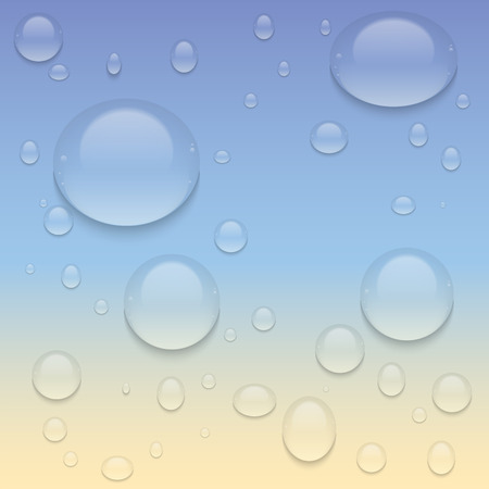 condensation: Realistic Transparent Water Drops.  Vector background with drops.