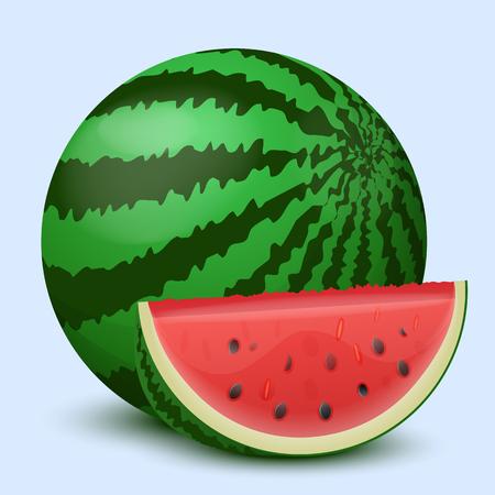 Watermelon on a light background. Vector illustration.
