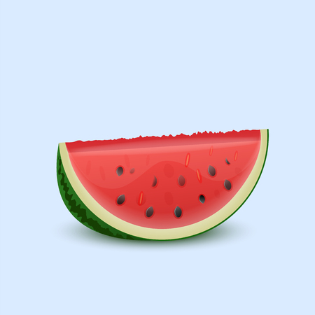 Watermelon on a light background. Vector illustration.