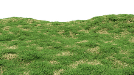 Green grass background with islands of dry withered grass. Hilly landscape covered with grass. 3d render.