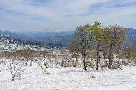 Residual snow and mountains 版權商用圖片