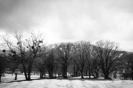 Snow remain Plateau
